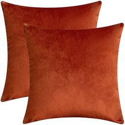 Rythome Set of 2 Comfortable Velvet Throw Pillow Cases Decorative Solid Cushion Covers for Sofa C... | Amazon (US)