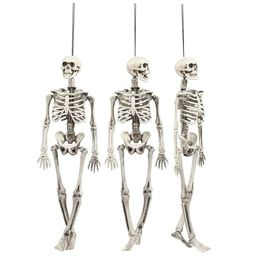 3-Pack Halloween Party Supplies, Realistic Plastic Skeleton Hanging for Haunted Houses, Pirate Th... | Walmart (US)