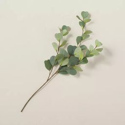 """18"""" Faux Eucalyptus Plant Stem - Hearth & Hand™ with Magnolia   Target"""