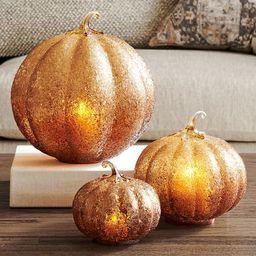 Textured Glass Amber Pumpkin Cloche | Pottery Barn (US)