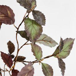"Artificial/Faux Plum Leaf Beech Branch 38"" + Reviews   Crate and Barrel   Crate & Barrel"