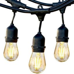 Brightech Ambience Pro Outdoor String Lights with 16 Hanging Sockets & Black LED Edison Bulb for Out | Target