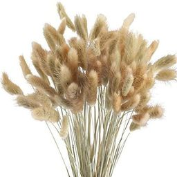 HUAESIN Natural Dried Flowers 100 Pcs Dried Pampas Grass Stems Rabbit Tail Grass Plants for Weddi... | Amazon (US)