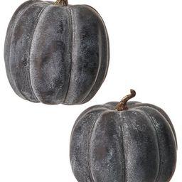 The Holiday Aisle® 2 Piese Waterproof Weathered Pumpkin Set | Wayfair North America