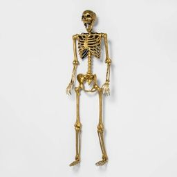 Posable Lifesize Skeleton Gold XL Halloween Decorative Mannequin - Hyde & EEK! Boutique™   Target