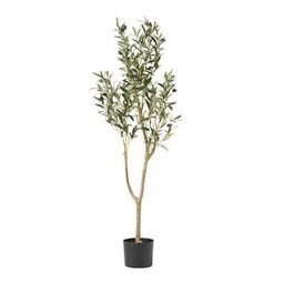 Taos 4' x 1.5' Artificial Olive Tree by Christopher Knight Home - 4' x 1.5'   Overstock