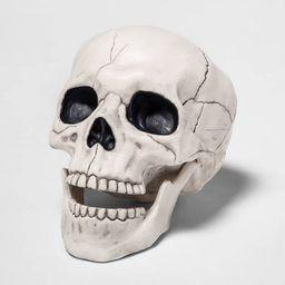 Skull Halloween Decorative Prop - Hyde & EEK! Boutique™   Target
