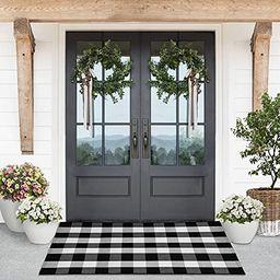 Lili Rey Buffalo Plaid Rug – 3 x 5 Black and White Outdoor Rug, Washable Indoor/Outdoor Rug, Fr...   Amazon (US)