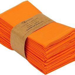 Ruvanti Kitchen Cloth Napkins 12 Pack 18 X 18 Inches Dinner Napkins Soft Comfortable Reusable Ora... | Amazon (US)