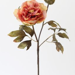 Terracotta Fake Peony Fall Flowers | Afloral (US)