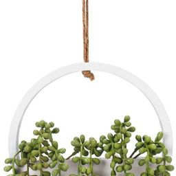 Hanging Plant Artificial Hanging Plants - Artificial Succulents Hanging Plants for Home Wall Deco...   Amazon (US)
