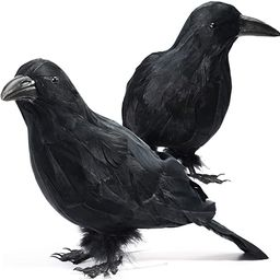 GABOSS Halloween Decorations Realistic 2 PCS Birds Black Feathered Crows - Halloween Ravens Prop ... | Amazon (US)
