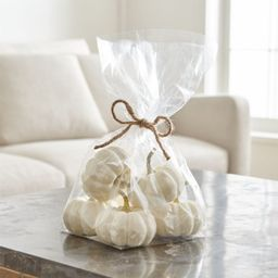 White Pumpkin Bowl & Vase Filler + Reviews | Crate and Barrel | Crate & Barrel