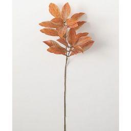 "Sullivans Artificial Croton Stem 29""H Orange Flowers | Target"