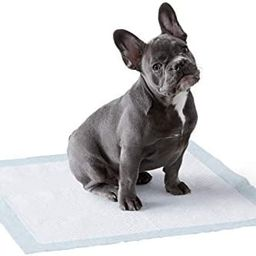 Amazon Basics Dog and Puppy Pads, Leak-proof 5-Layer Pee Pads with Quick-dry Surface for Potty Tr...   Amazon (US)