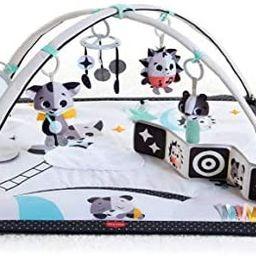 Amazon.com : Tiny Love Black & White Gymini Infant Activity Play Mat With Book, Magical Tales, De... | Amazon (US)