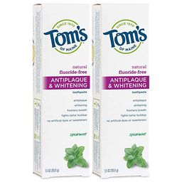 Tom's of Maine Fluoride-Free Antiplaque & Whitening Natural Toothpaste, Spearmint, 5.5 oz. 2-Pack | Amazon (US)