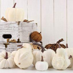 DomeStar Artificial Pumpkins, 12PCS White Fake Pumpkins Fall Harvest Mini Pumpkins Small Faux Whi... | Walmart (US)