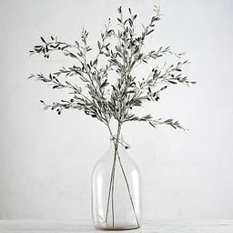 Faux Olive Branch   Pottery Barn (US)