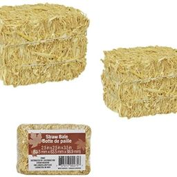 Mini Straw Bale Bundle of 3 Natural Hay for Autumn Fall Harvest, Craft Decoration and Display 2.5...   Amazon (US)