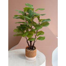 "GreenBoxx Faux Fiddle Leaf Fig Tree Artificial – 45 Total Leaves - 35"" Tall - Walmart.com   Walmart (US)"