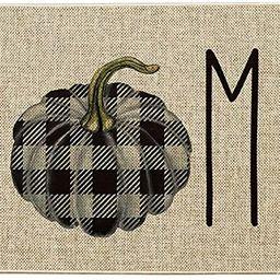 Artoid Mode Buffalo Plaid Pumpkin Home Decorative Doormat, Seasonal Fall Harvest Thanksgiving Rus... | Amazon (US)