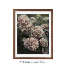 Painting Inspired Fluffy Fall Hydrangeas Print | Etsy | Etsy (US)