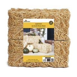 Way to Celebrate Harvest Decorative 20 Inch Straw Bale, 2 Pack - Walmart.com | Walmart (US)