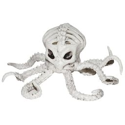 """6"""" Octopus Skeleton by Ashland® 