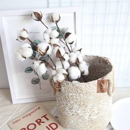 Cotton Stems Farmhouse Style Display for Floral, Wedding and Fall Decor - 21 Inch Picks with 10 W... | Walmart (US)
