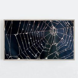 Halloween Samsung Frame TV Art Spider Web Wall Art Spooky | Etsy | Etsy (US)