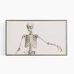 Samsung Frame TV Art Vintage Anatomical Drawing Frame TV | Etsy | Etsy (US)