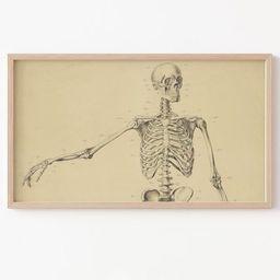Frame TV Art File Samsung Frame TV Art Skeleton Vintage | Etsy | Etsy (US)