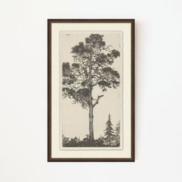 Tree Tops 1 | Stoffer Home