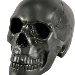 Myard HHS Heavy Cement Imitated Human Skull Art Decor Statue for Home & Garden, Bookends, Headset... | Amazon (US)
