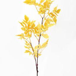"Fake Cimicifuga Ramosa Fall Leaves in Mustard - 31"" | Afloral (US)"
