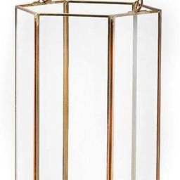Serene Spaces Living Clear Glass Hexagon Lantern with Gold Edges, Measures 8 inches Tall, Sold In... | Amazon (US)