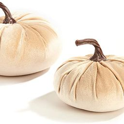 Velvet Pumpkins for Decorating - Set of 2, Plush Velveteen Fabric with Realistic Stems, 5 Inch an... | Amazon (US)