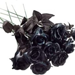 Yebazy 10pack Black Artificial Silk Roses Flowers Fake Silk Rose Bouquets for Wedding Party Home ...   Amazon (US)