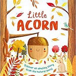 Nature Stories: Little Acorn: Padded Board Book   Amazon (US)