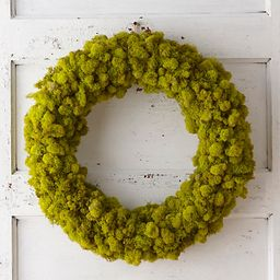 Reindeer Moss Wreath   Terrain