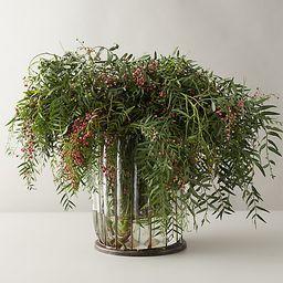 Fresh Pepperberry Branch Bunch | Terrain
