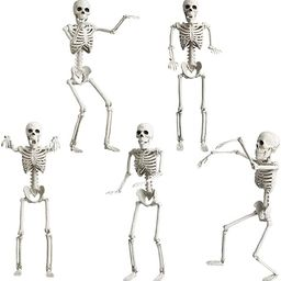 """Halloween Skeleton Decorations Full Body - 5 Pack 16"""" Life Size Posable Joints Skeletons Hallowee... 