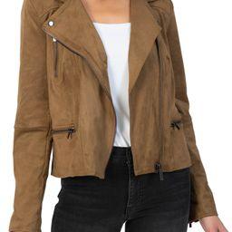 Quinn Faux Suede Moto Jacket | Nordstrom | Nordstrom