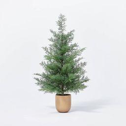 Medium Pine Tree in Ceramic Pot - Threshold™ designed with Studio McGee   Target