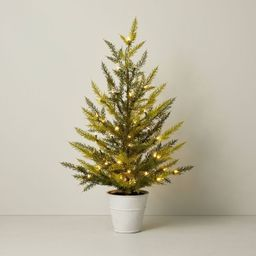 "40"" Pre-Lit LED Faux Porch Pot Cedar Tree - Hearth & Hand™ with Magnolia | Target"