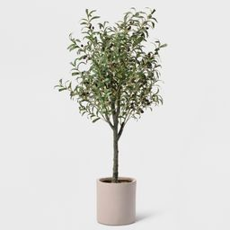 """60"""""""" Potted Olive Tree - Lloyd & Hannah, Green 