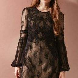 UO Belladonna Embroidered Mesh Dress - Black XS at Urban Outfitters | Urban Outfitters US