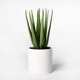 """12.5"""""""" x 5"""""""" Artificial Aloe Plant In Pot Green/White - Project 62 