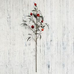 Faux Pomegranate Tree Branch, Red, One   Pottery Barn (US)